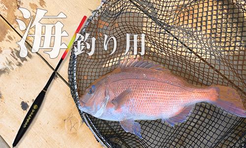 海釣り用のイメージ